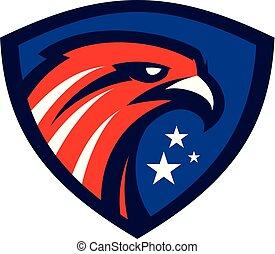 Heraldic Eagle head in shield