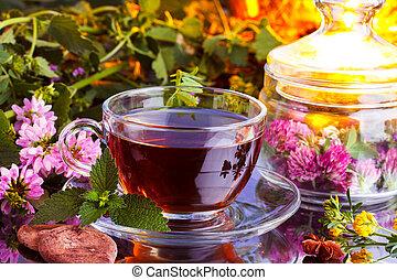 herbário, fresco, chá