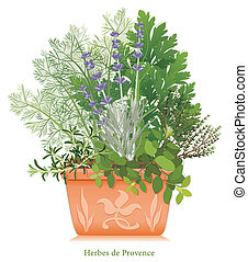 Herbes de Provence garden, classic blend of aromatic cooking herbs of southwestern France, left to right: Rosemary, Sweet Fennel, Italian Flat Leaf Parsley, Thyme, Oregano, Lavender, in square clay flowerpot planter with embossed floral design. EPS8 compatible. See other herbs and spices in this ...