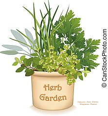 Herb Garden Planter, gourmet cooking herbs in clay flowerpot crock, left to right: Italian Oregano, Sage, Chives, Flat Leaf Parsley, Sweet Marjoram, isolated on white background. EPS8 compatible.