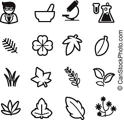 Herb icons set