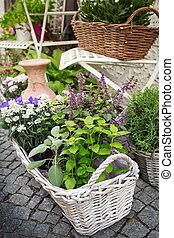 Herb leaf and flowers selection in a rustic wooden basket