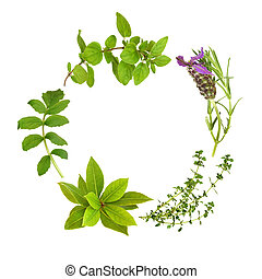 Herb Leaf Garland - Herb leaf garland of lavender, bay, ...