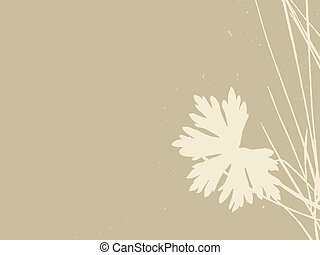 herb on brown background, vector illustration