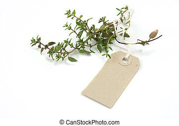 Herb Thyme and label tag