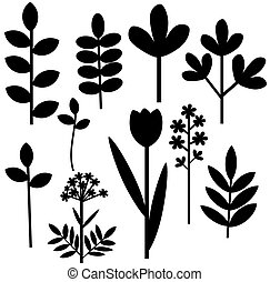 Herbal abstract set - Set of black leaves and flowers