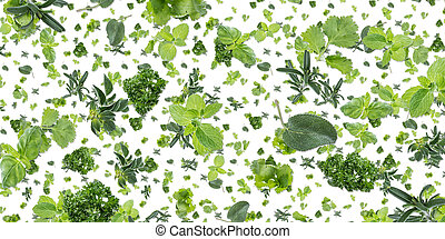 Herbal background (on white)