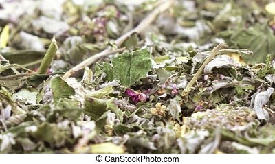 Herbal Carpathian tea - Tea from mountain Carpathian herbs