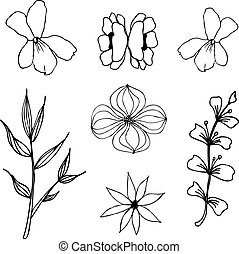 Herbal floral drawing isolated. Liner vector illustration on white