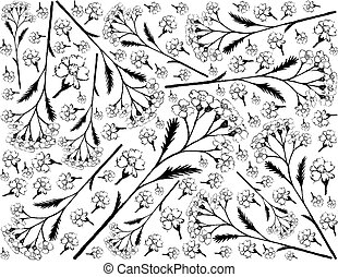 Hand Drawn Background of Achillea Millefolium or Yarrow ...