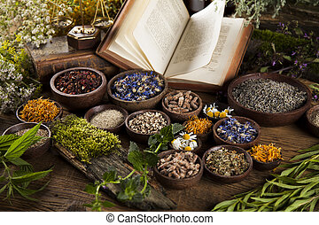 Herbal medicine and book on wooden table background - ...