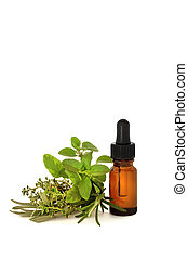 Herbal Medicine - Herb leaf selection of lavender, thyme, ...