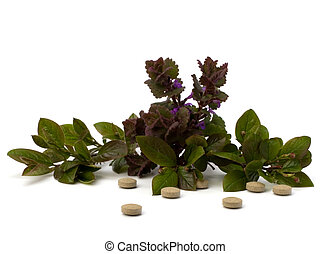 herbal medicine isolated on white background - herbal...