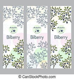 Herbal tea collection. Bilberry banner set