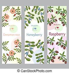 Herbal tea collection. Cinnamon rose, raspberry, honeyberry banner set.