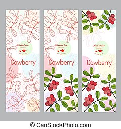 Herbal tea collection. Cowberry banner set