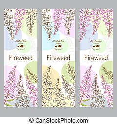 Herbal tea collection. Fireweed banner set. Hand drawn vector illustration