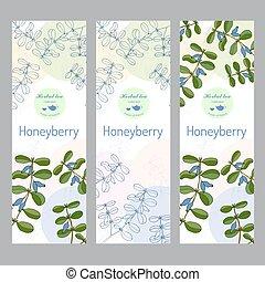 Herbal tea collection. Honeyberry banner set.