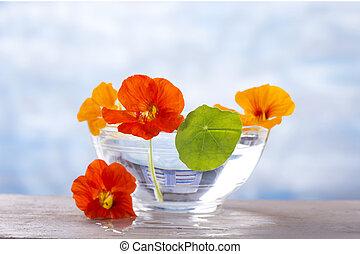 herbal tea, decoction of nasturtiums - a Glass bowol of...