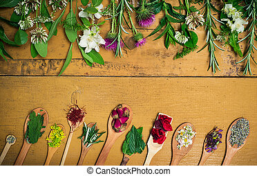 Herbal tea flowers collection on a wooden table