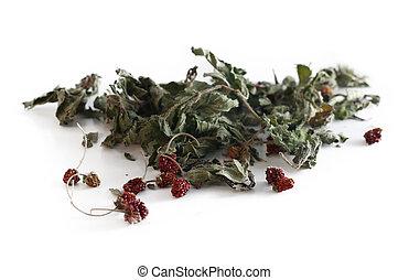 Herbal tea. Dried mint and wild strawberries