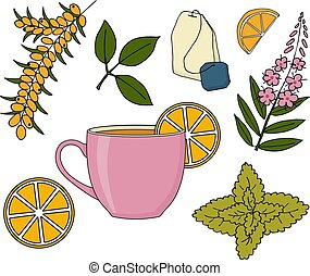Herbal tea set. Herbal tea cup, plants and fruits on white background