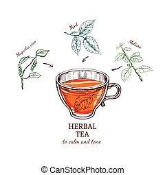 Herbal Tea Sketch Recipe