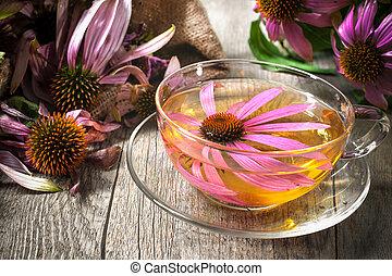 Herbal Tea - Echinacea purpurea. Cup of echinacea tea on...