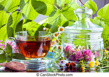 Herbal tea with natual cocoa and fresh herbs