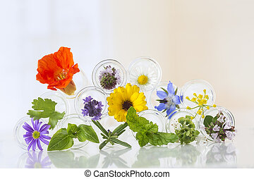 Flowers in test-tubes isolated on white - herbal therapy ...
