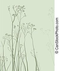 herbario, delicado, plano de fondo, naturaleza