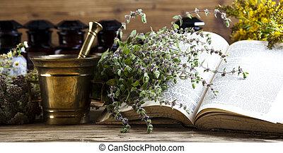 herbario, natural, tono, medicina, colorido