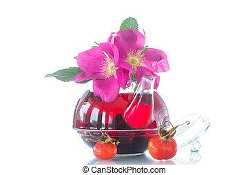 herbata, biodra, róża