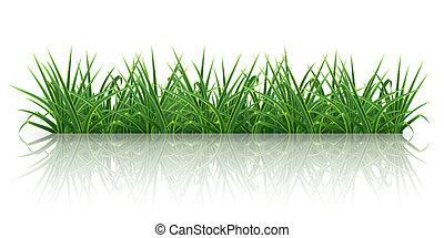 herbe, 10eps