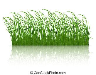 herbe, 10eps, vert