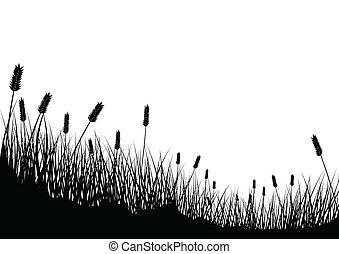 herbe, blé, fond