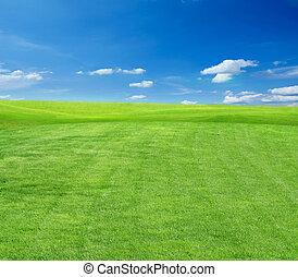 herbe champ, ciel, nuageux