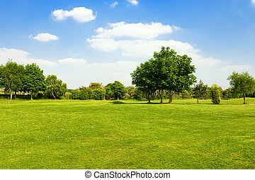 herbe champ, golf vert