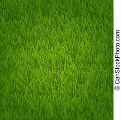 herbe, champ vert, fond, nature