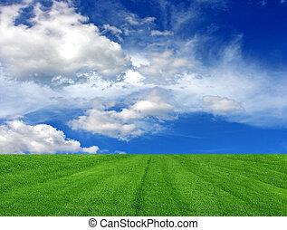 herbe, ciel, nuageux