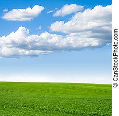 herbe, ciel, paysage