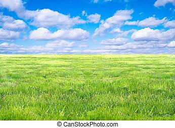 herbe, ciel