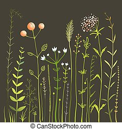 herbe, collection, champ, noir, fleurs sauvages