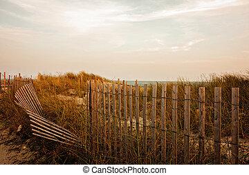 herbe, coucher soleil, mer