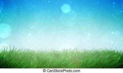 herbe, ensoleillé, boucle