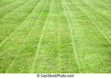 Fauch pelouse coupure closeup fond herbe fauch for Pelouse tarif