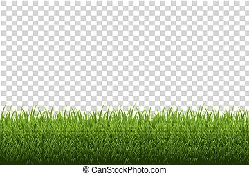 herbe, frontière
