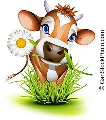 herbe,  jersey, vache