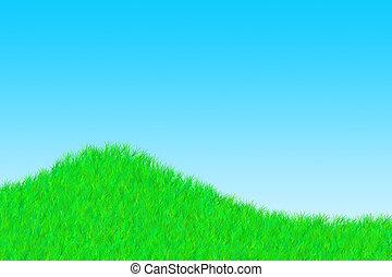 herbe, jour ensoleillé