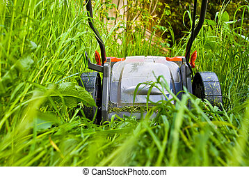 herbe, lawnmowner, long